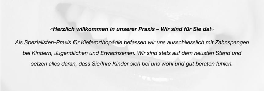 Willkommen Kieferorthopädie Menzel Thun, wir befassen und mit Zahnspangen